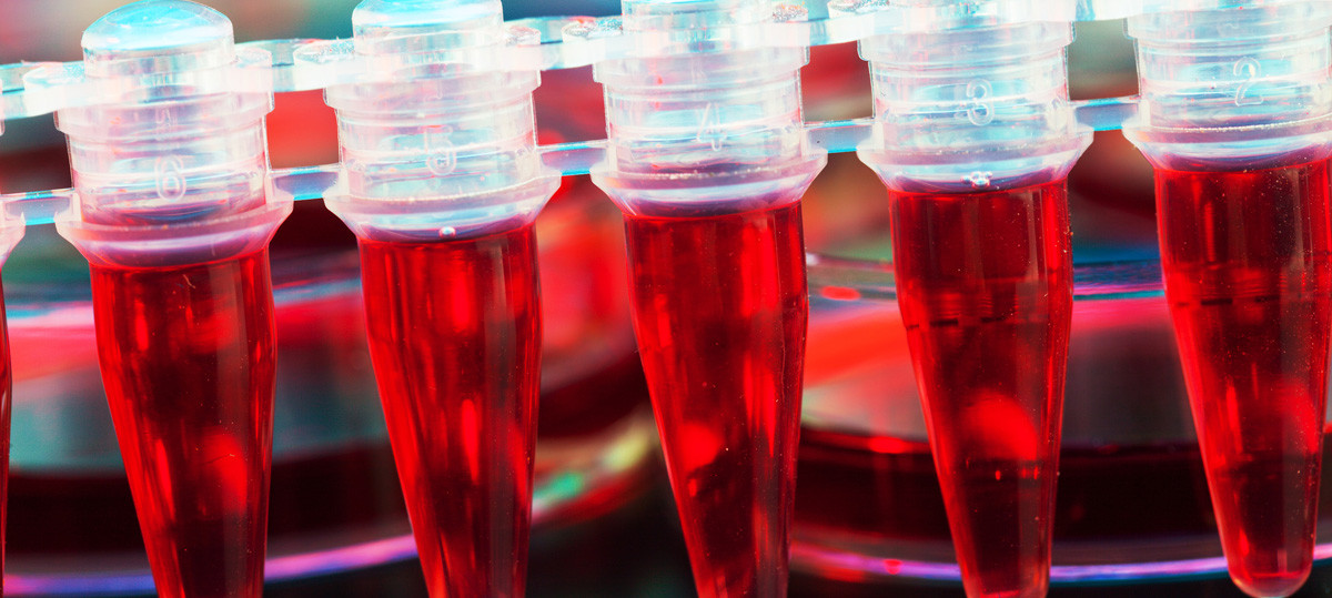 stem cell therapy myths & misconceptions