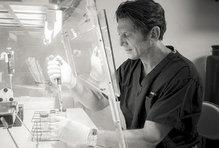 harvesting stem cells for a back injection procedure